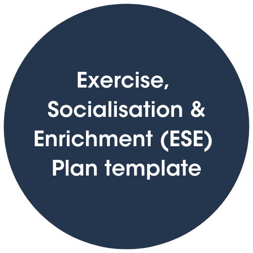 Click to view Exercise, socialisation & enrichment plan template